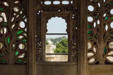 Détail d'architecture à Udaipur, Rajasthan -