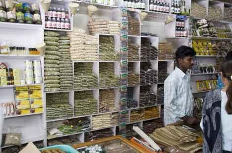 Boutique aux épices de Munnar, Kerala, Inde du sud -