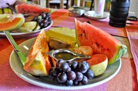 Fruits du Sud, Inde du Sud -