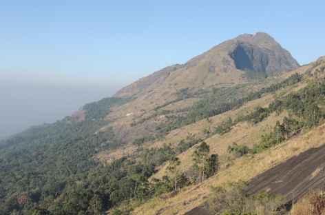 Mesapullimalaï, Inde du Sud -