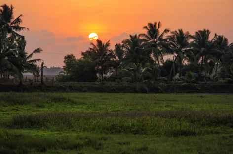 Coucher de soleil depuis les back water, Inde du Sud -