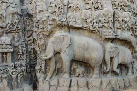 Détail des fresques à Mamallapuram, Inde du Sud -