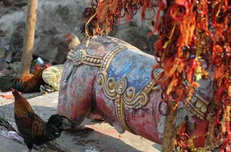 Temple de Kali - Orissa, Inde -