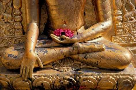 L'éveil de Bouddha -
