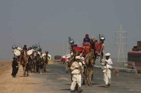 Caravane chamelière sur la route -