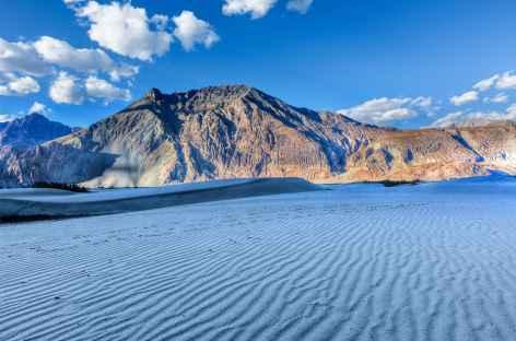 Les fameuses dunes - Vallée de la Nubra -