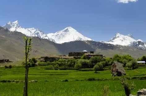 vallée de Rangdum - Ladakh, Inde -