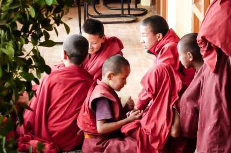 Moines - Ladakh, Inde -