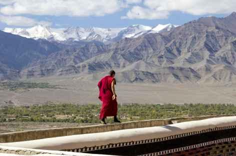 Moine au dessus de la plaine - Ladakh - Inde -