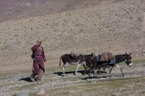 Vie de village - Ladakh - Inde -