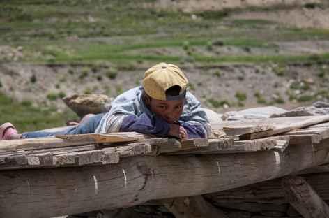 Curieux - Ladakh - Inde -