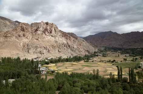Vallée de L'Indus  - Ladakh - Inde -
