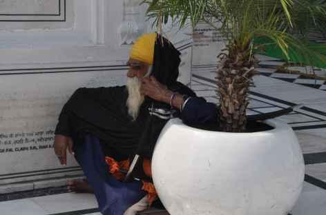 Sikh, Amritsar -