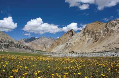 Vers le Sniougoutse La, Ladakh, Zanskar- Inde -