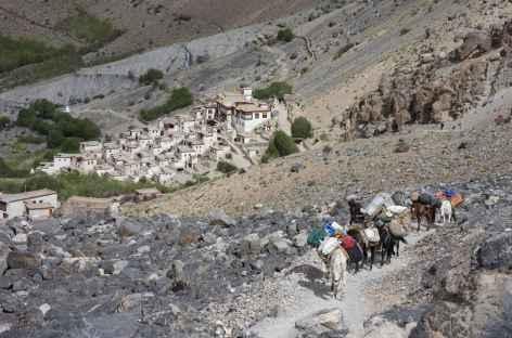 Le village de Lingshed  blotti contre la montagne, Ladakh, Zanskar- Inde -