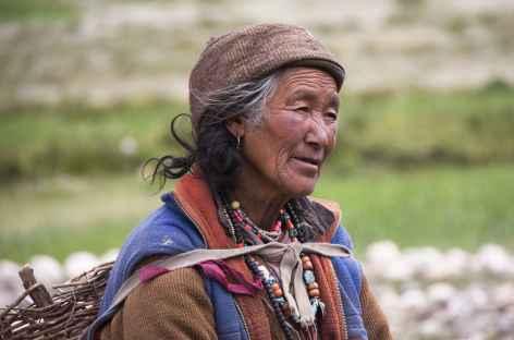Femme qui rentre du champ, Ladakh, Zanskar- Inde -