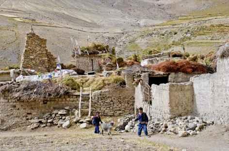 Enfants de Photoksar, Zanskar - Inde -