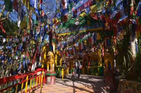 Temple bouddhiste, Darjeeling -
