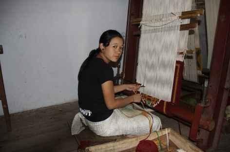 Tisseuse, Sikkim -