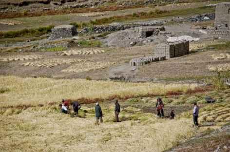Ladakh - Inde  -