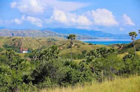 Randonnée sur l'île de Rinca, archipel de Komodo - Indonésie -