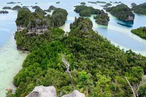 Au large de l'île de Misool, Raja Ampat - Indonésie -