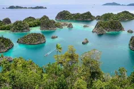 Archipel de Penemu, Raja Ampat - Indonésie -