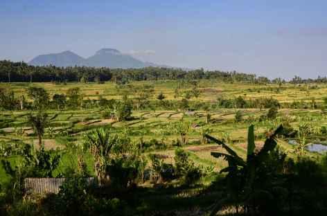 Randonnée entre Tenganan et la plage de Pasir Putih, Bali - Indonésie -