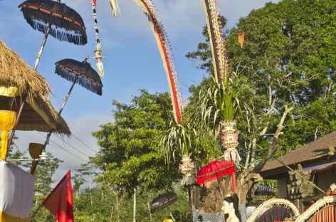 Villge en fête, Bali - Indonésie -