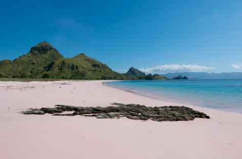 Plage  de sable rose à Padar, archipel de Komodo - Indonésie -