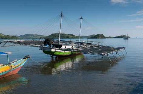 Au port de Labuan Bajo, Flores - Indonésie -