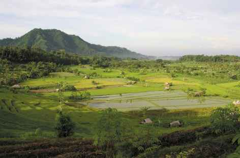 Rizières et plantations vers Sidemen, Bali - Indonésie -