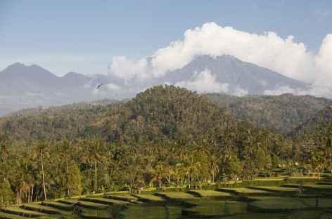 Paysage vers Munduk, Bali - Indonésie -