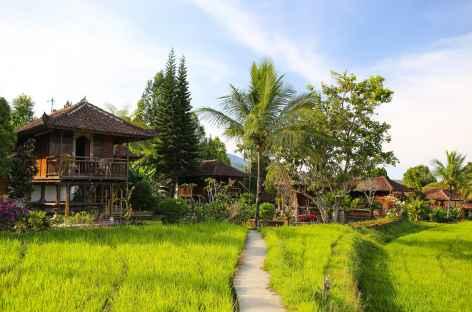 A Munduk, Bali - Indonésie -