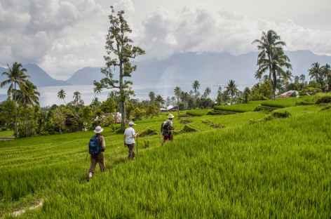 Marche de Puncak Lawang jusqu'au lac Maninjau, Sumatra - Indonésie -