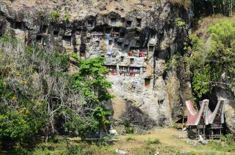Site funéraire de Lemo, Pays Toraja, Sulawesi - Indonésie -
