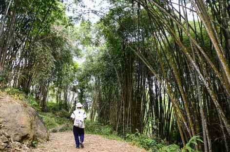 Trek entre Old Karunanga et Aqung, Pays Toraja, Sulawesi - Indonésie -