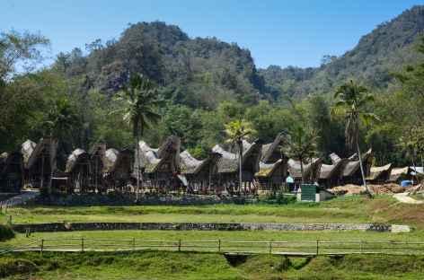 Village de Ke'te Kesu, Pays Toraja, Sulawesi - Indonésie -