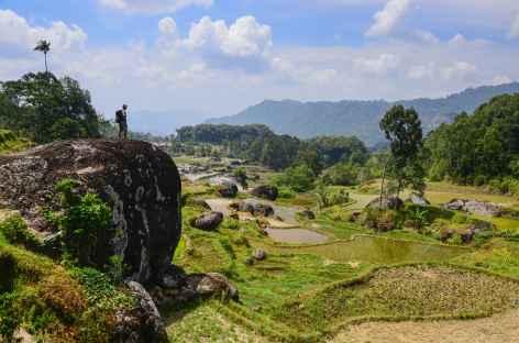 Trek dans la région de Batutumonga, Sulawesi - Indonésie -