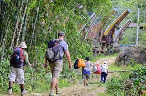 Marche vers le village de Lempo, Pays Toraja, Sulawesi - Indonésie -