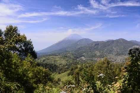 Volcan Semeru au loin, Java - Indonésie -