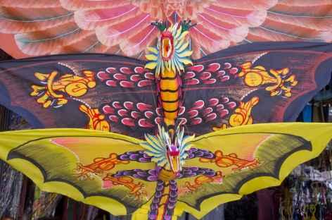 Cerf-volants, passion des Balinais -