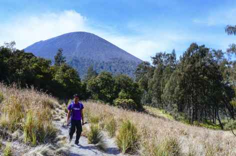 Trek en direction du camp de base du Semeru, Java - Indonésie -