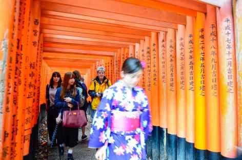 Torii au sanctuaire shintoiste de Fushimi Inari, Kyoto - Japon -