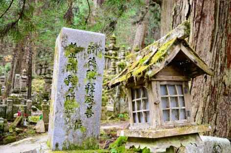 Dans la nécropole sacrée d'Okuno-in, Koya San - Japon -