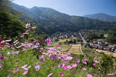 Village de Shirakawago dans les Alpes Japonaises - Japon -