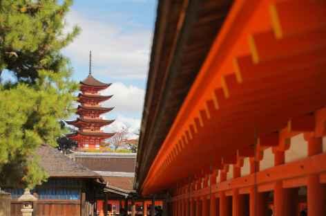 Ile de Miyajima - Japon -