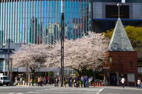 Centre de Tokyo - Japon -