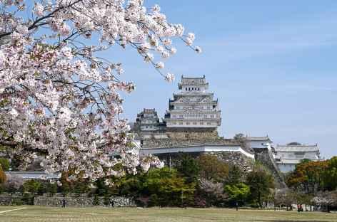 Château de Himeji - Japon -