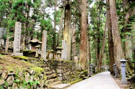 Nécropole sacrée d'Okuno-in, Koya San - Japon -